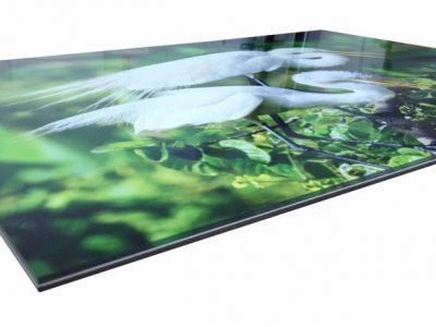 acrylic_prints-03